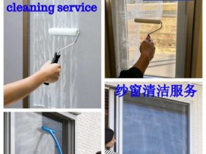 Insect Screen Cleaning Service